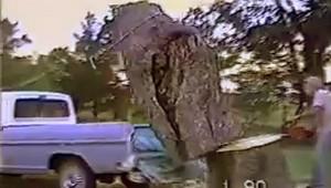 楽して木をトラックに載せようとした結果(笑)