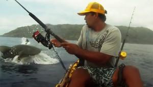 釣りしてたらサメがいた(笑)
