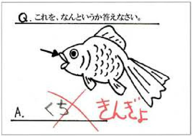 new_金魚