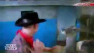 鹿に喧嘩を売った男性の結末