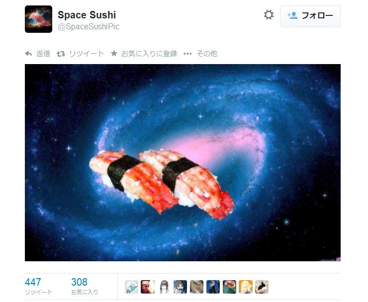 spacesushipic2