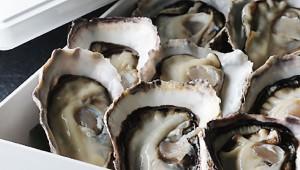 至高の高級感「重箱入り生牡蠣」が堪能できるオイスターバー開店 / ザ・カーブ・ド・オイスター