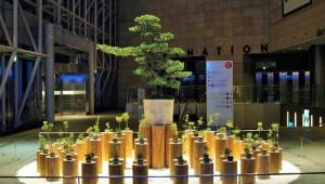 【1月7日まで】まだ間に合う! 100人でつくった門松が六本木ヒルズで公開中