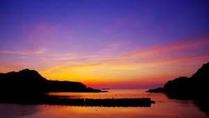 自然現象やことわざで天気を予想する「観天望気」が役立つ! スズメが早朝からさえずると晴れる