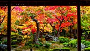 【マジかよ】東京都民が京都に引っ越してムカついたこと6つ