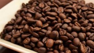 最高品質のコーヒー豆だけを扱う自家焙煎店『Cafoo』が素晴らしい件