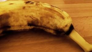 【衝撃】今まで普通に食ってたぞ(涙)! バナナからクモが生まれてきた動画に世界が絶叫