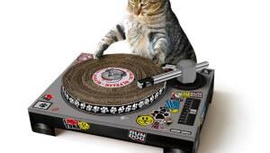 【革命的】ニャンコ用ターンテーブルが凄い! これで猫もDJデビュー!