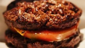 【激ウマ】東京で一番おいしいハンバーガー店シェイクツリー / パン不使用! 肉で挟むハンバーガー・ワイルドアウトに感激!