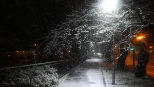【緊急事態】東京が大雪で大荒れ! 解けやすく滑りやすい湿った危険な雪