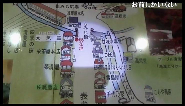 takaosan-yokoyamamidori2