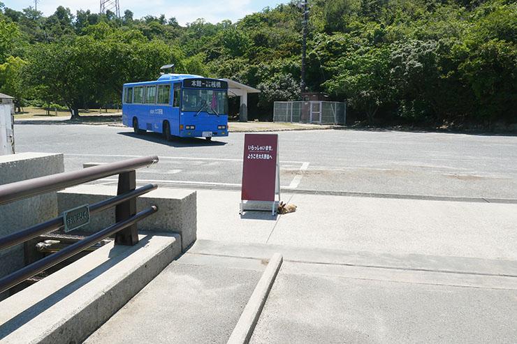 usagi-no-shima19