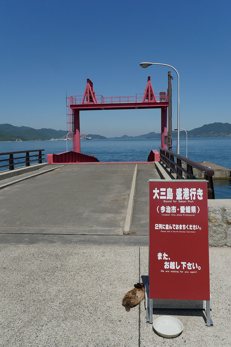 usagi-no-shima21