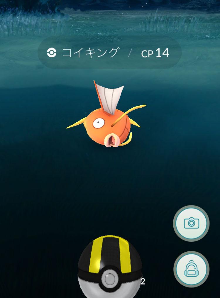 pokemon-go-koiling5