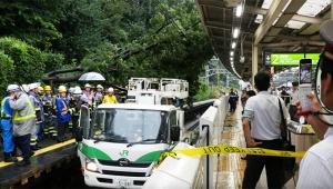【緊急事態】JR山手線の原宿駅で倒木がホーム直撃 / 大規模な…
