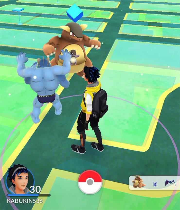 pokemon-go-complete5