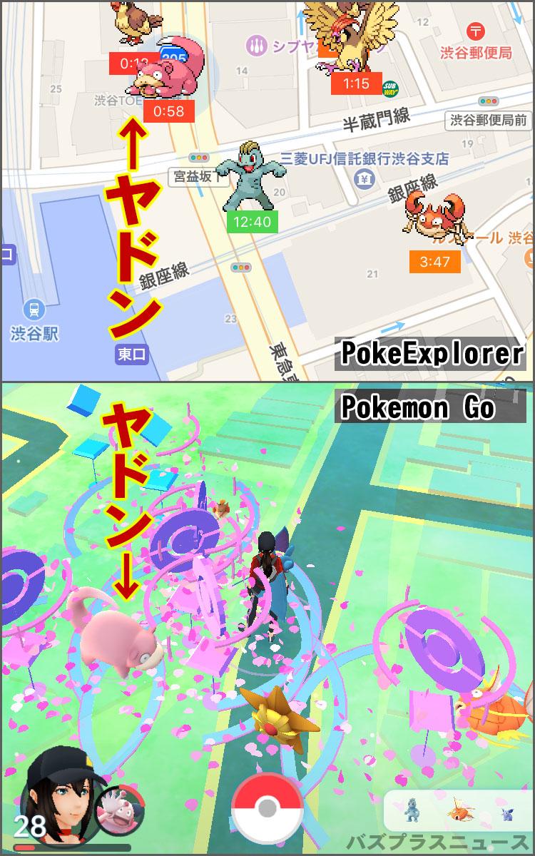 poke-explorer1