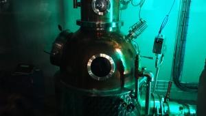 スコットランド地下室の蒸留所: エディンバラ・ジン