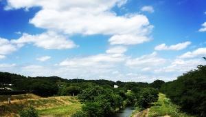 【移住したくなる】東京の知られざる素晴らしい街 / 東京都清瀬市のいいところ10選
