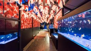 この夏、すみだ水族館の「東京金魚ワンダーランド」「水木しげる×すみだ水族館 水の妖怪トンネル」がすごい!