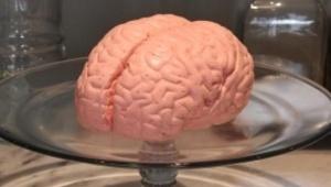 【衝撃】今年も返ってきた「実物大?! 脳みそマシュマロ」がヤバイぞおおおおおお! パパブブレのハロウィン