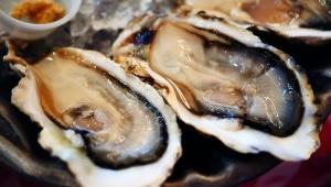 【極上牡蠣】ニューヨークから上陸したオイスターレストランで九十九島産の牡蠣を堪能する / グランドセントラルオイスターバー