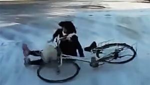 【衝撃】雪道で何度も転びまくる女子高生が危険 / 何度立ち上がろうとしても滑って転倒