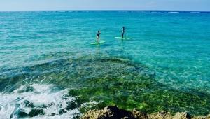 沖縄の冬はサップフィッシングが熱い! ボードで海釣りをする新スポーツ誕生 / 沖縄のレアな魚が釣れまくり