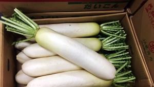【激怒】野菜の卸売業者がマスコミにブチギレ激怒「本当に腹が立つ」「下げ相場を狙ったかのように野菜の高値を報道する」