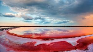 ウクライナの深紅の腐海が絶景すぎる! まるで地球じゃないみたい