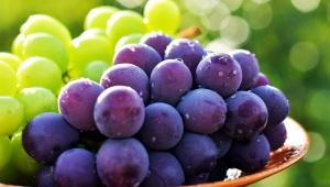 【衝撃】ブドウを甘いまま数倍長持ちさせる方法が凄い / 甘くて腐らなくてハリも残る裏技