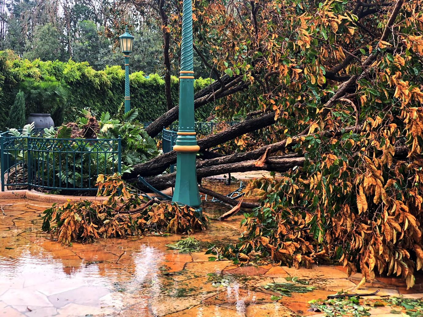 hong-kong-disneyland-damage3