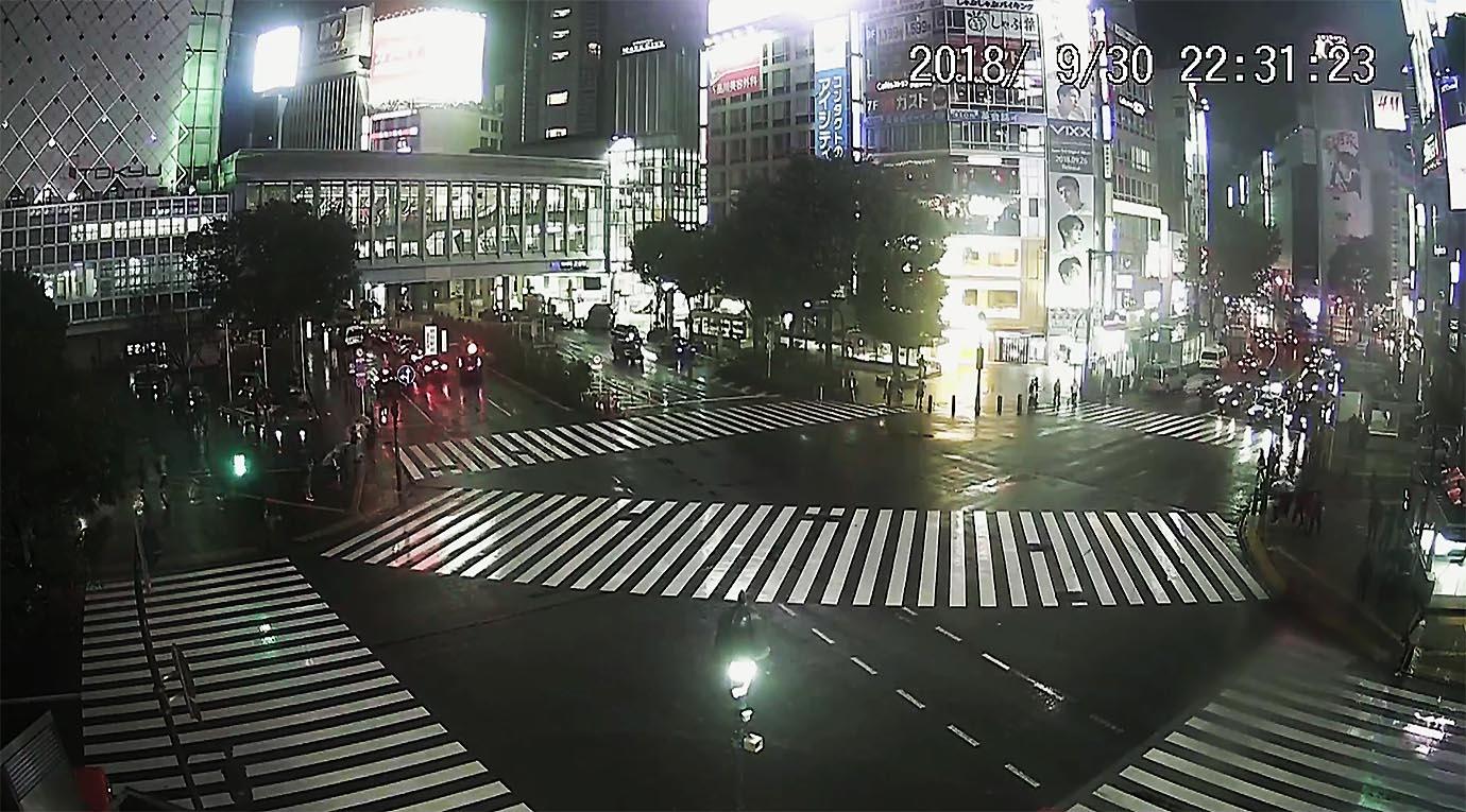 shibuya-taifu