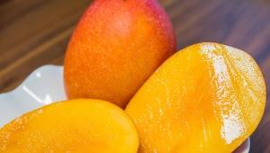 【注意喚起】こんな人はマンゴーを絶対食べるな! アレルギー発症で重症になることもある危険フルーツ