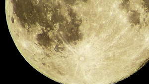 【話題】ZOZO前沢社長と剛力彩芽が宇宙空間で妊娠か / 人類初の月面妊娠計画発動へ「宇宙妊娠」