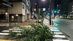 【非常事態】台風に東京都襲われトラブル多発 / 車道に街路樹やビニール傘が散乱「きわめて危険な状態」