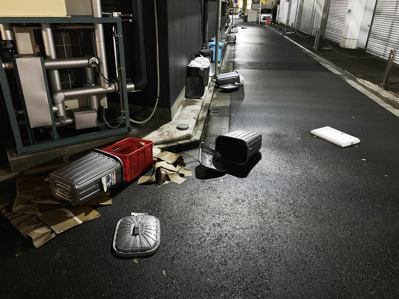 tokyo-taifu9