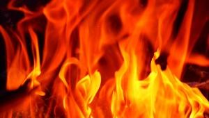 【炎上】パクリ本が絶版になった渡辺真由子博士 / 大学の博士論文もパクリ疑惑で「調査委員会立ち上げ」