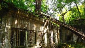 【魅惑のカンボジア】ラピュタの世界が実在した! 神秘のベンメリア遺跡