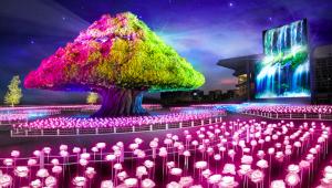【話題】2万本のバラが輝きペガサスが羽ばたく!? 大井競馬場のイルミネーションイベントが壮大すぎる件
