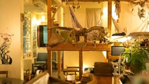 【旅カフェ】旅人が集う下北沢のオーガニックカフェ「cafe Stay Happy」(カフェ ステイハッピー)