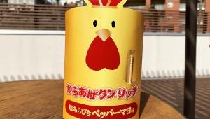 【希少グルメ】普通には買えない激レアな「からあげクンリッチ」が激しく美味しい件