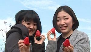 【衝撃】栃木県と TikTok がコラボ! その名も #Tochigitok がシュールすぎる件 / 数々の「とちぎ映え」スポット紹介(笑)