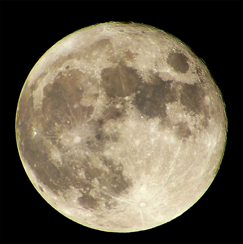 moonrace