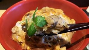 【話題】青汁王子が修行している焼鳥屋で親子丼を食べてみた / とりまる「奥久慈卵の親子丼」