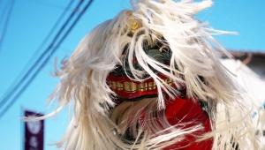 【話題】沖縄の獅子舞が怖すぎるとネットで話題 / 獅子舞とは違う別の生き物みたい