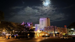 【魅惑の夜旅】小倉の夜があまりにも美しすぎて移住したくなるレベルでファンタジー