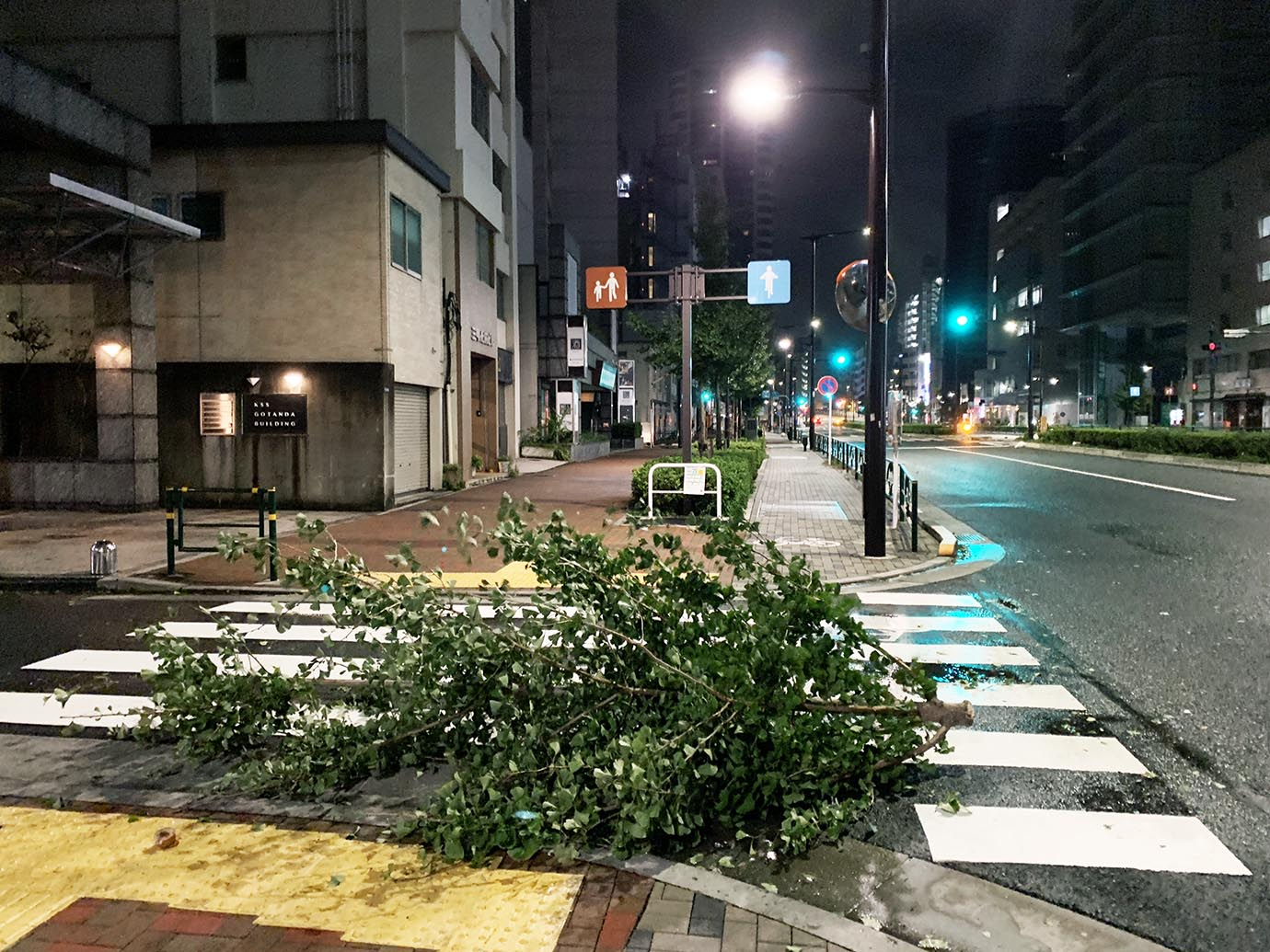tokyo-taifu2