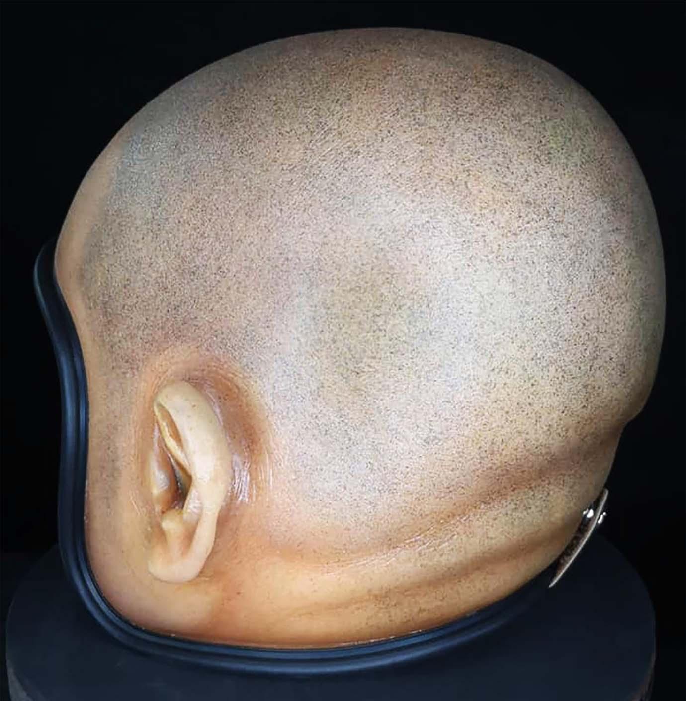 bozu-helmet2