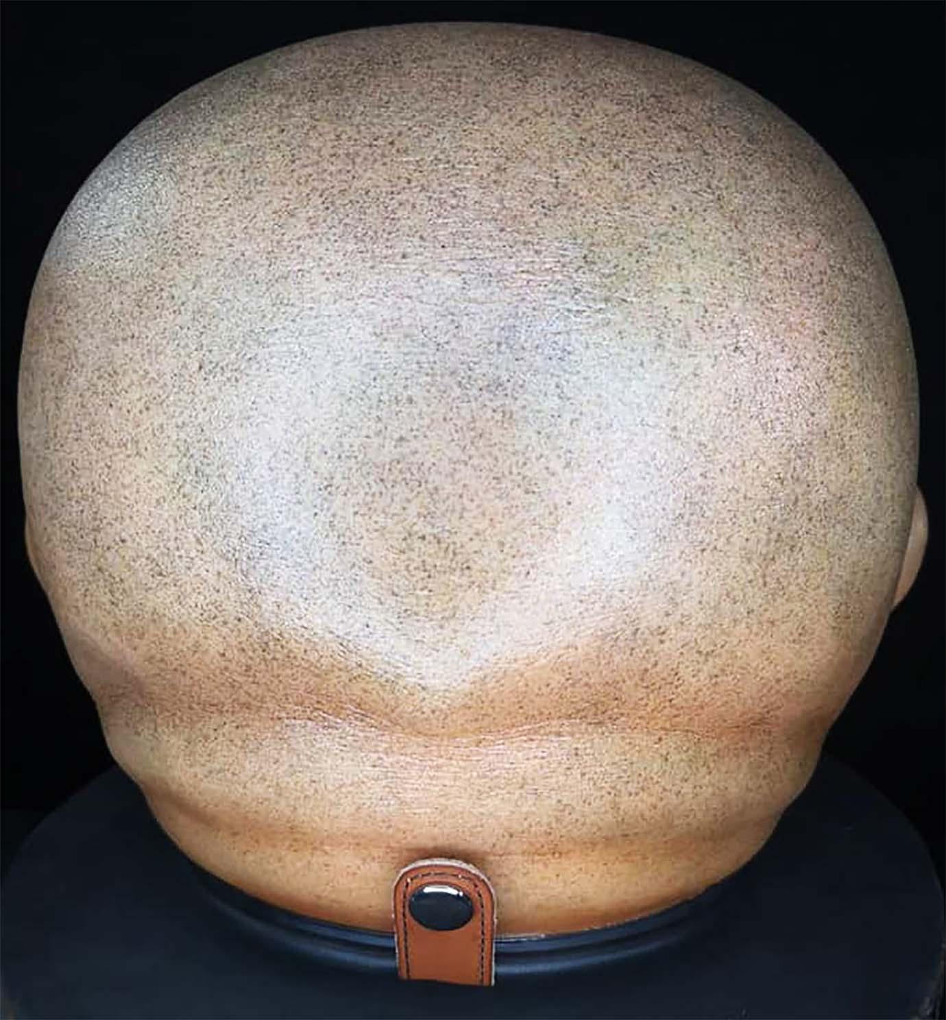 bozu-helmet8